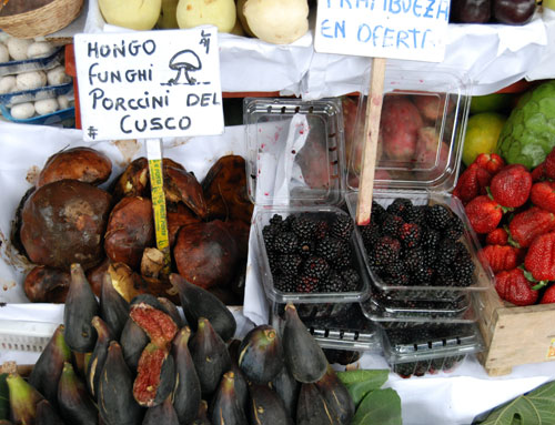 Giant porcini mushrooms, <b>Amoxicillin 500mg Side Effects</b>, figs and blackberries for sale at Surquillo Market No. 1, <b>100mg Amoxicillin 500mg Side Effects</b>, <b>500mg Amoxicillin 500mg Side Effects</b>, Lima; photo by Barbara Drake