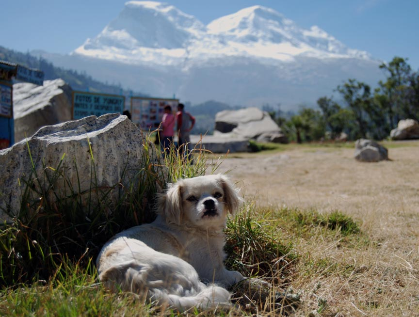 Mount Huascaran in the background